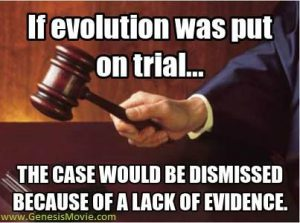 No evidence for evolution