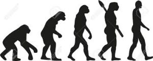 Is evolution science?