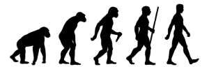 How does evolution work
